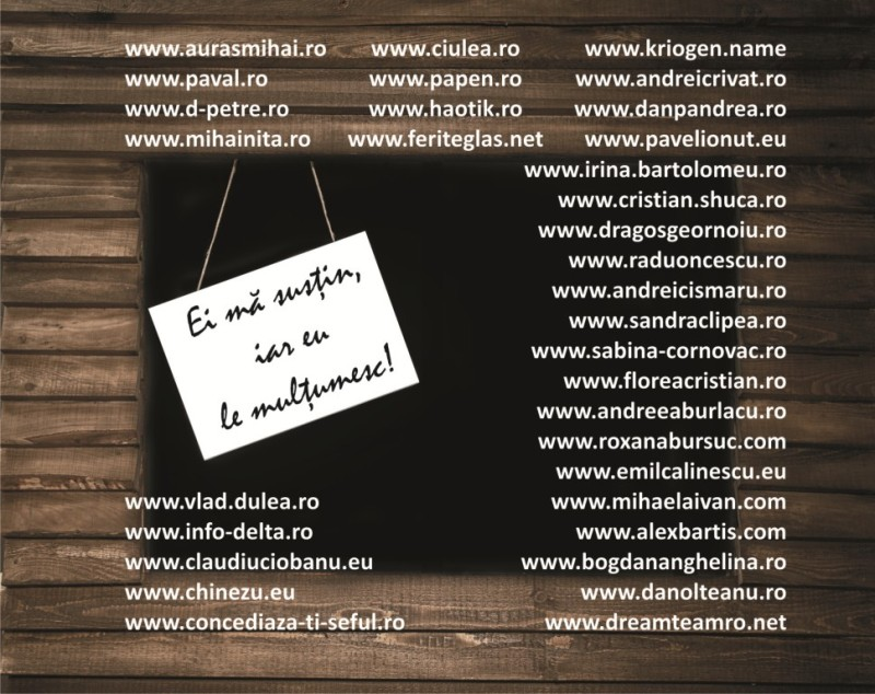 Coperta_Bloggeri_Finala-web