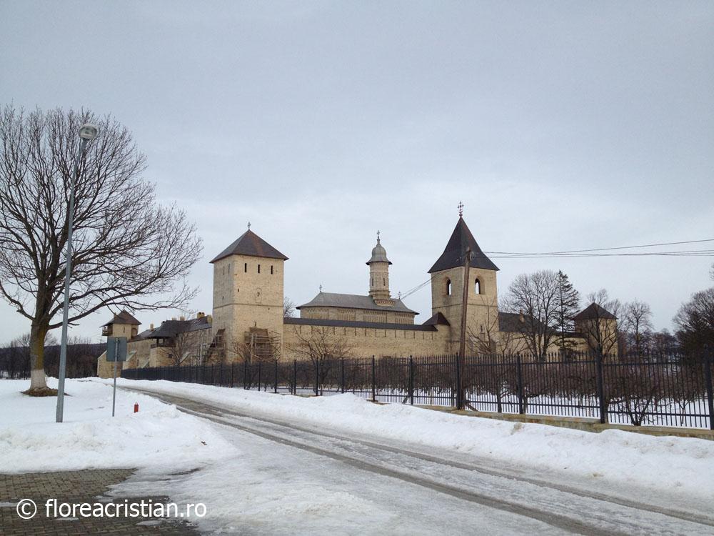 Manastirea Dragomirna 5